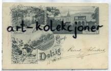 Dłużek - Dolzig k. Lubsko - Pałac - Litografia