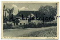 Bojadła - Boyadel - R.A.D - Maidenlager