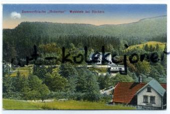 Szczytna - Ruckers - Waldestein - Hubertus